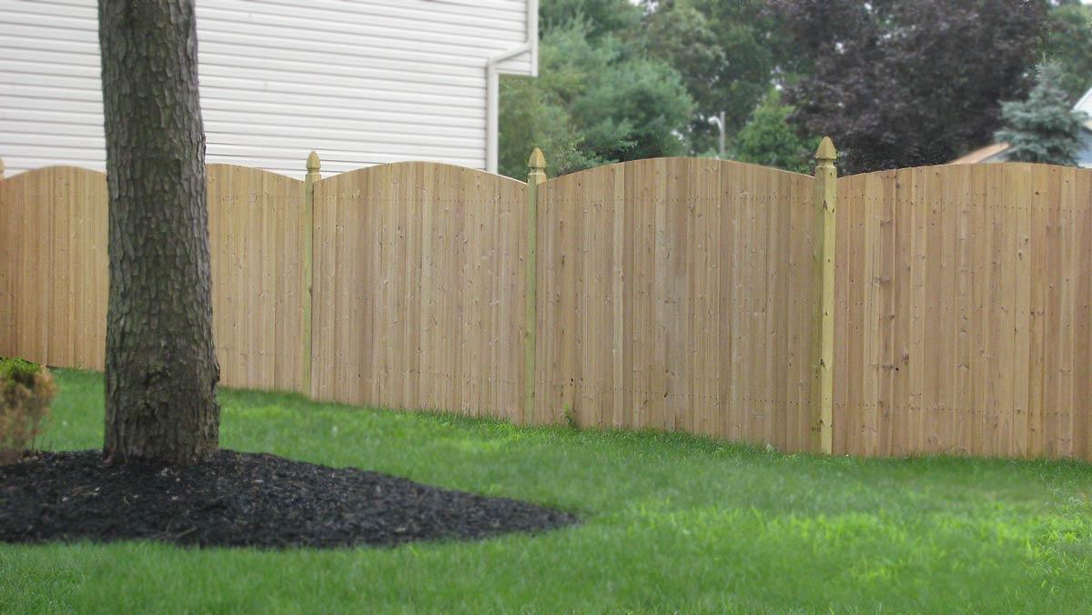 Cedar Fence IMG 1177