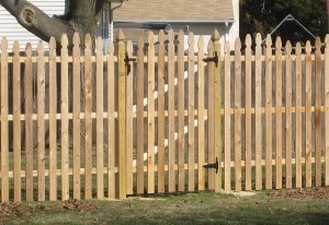 Spaced Gothic Point Cedar Fence