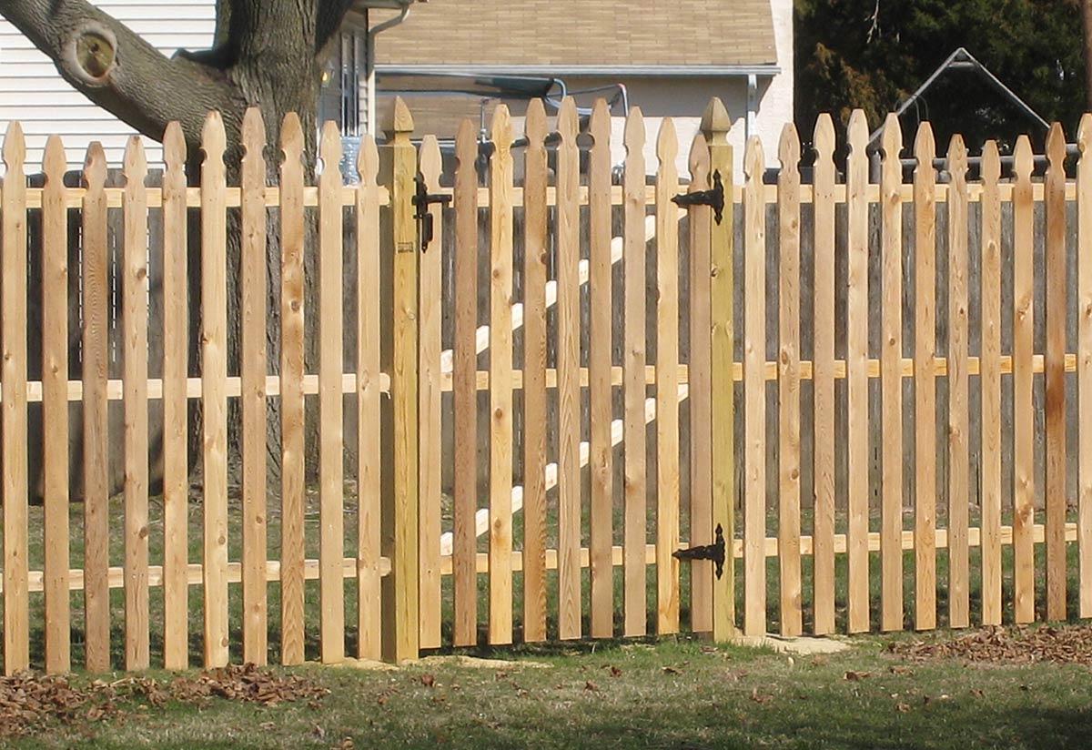 Cedar Fence IMG 1525