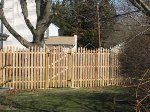 Double Convex Cedar Fence