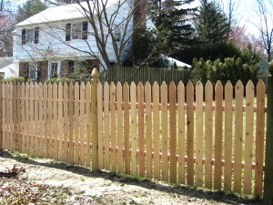 Pool Spaced Straight Regular Point Cedar Fence