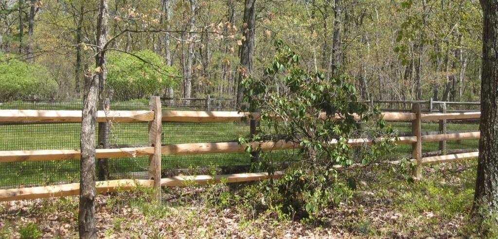 Amechi split rail fence